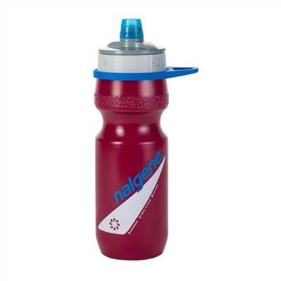 Berry - Nalgene Draft Water Bottle