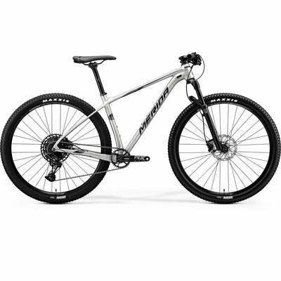 Merida Bikes 2020 Big.Nine NX-Edition