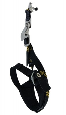 Black Diamond Cobra/Viper Android Leash