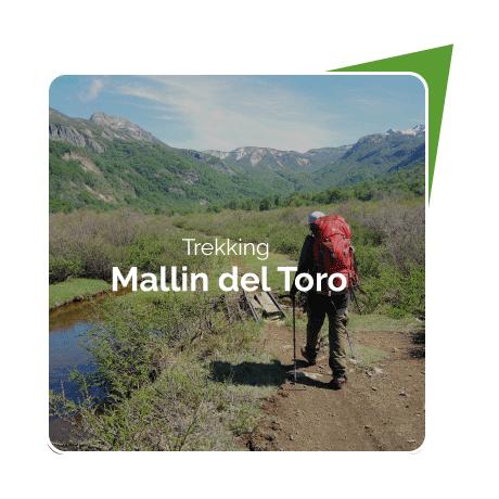 Trekking Mallin del Toro
