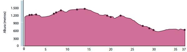 Altimetria de la ruta de mountainbiking