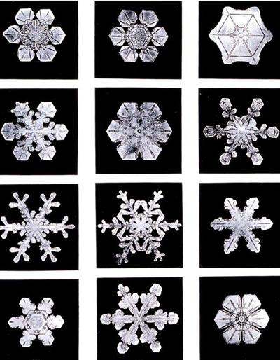 c1a008fc2b El ciclo de la nieve